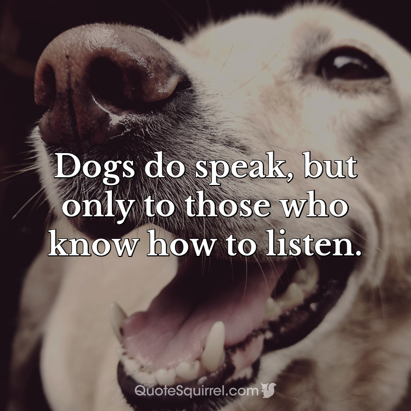 Dogs do speak, but only to those who know how to listen