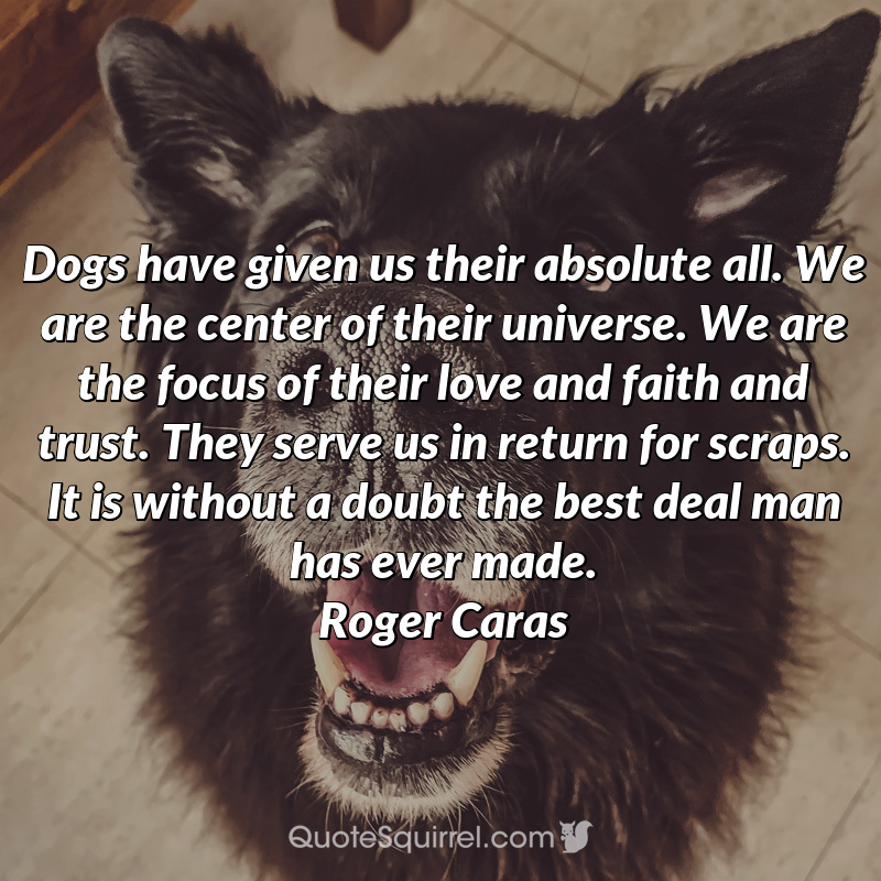 Dogs have given us their absolute all. We are the center of their
