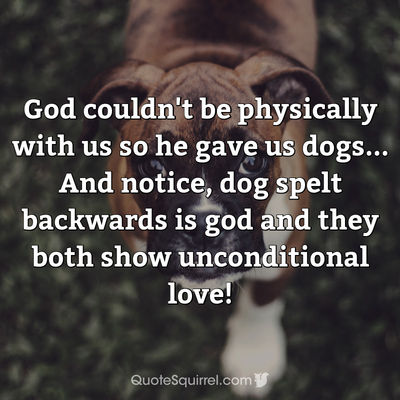 God couldn't be physically with us so he gave us dogs… And notice, dog