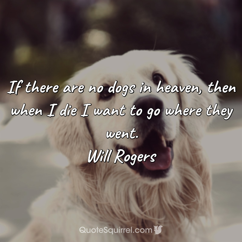 If there are no dogs in heaven, then when I die I want to go where they