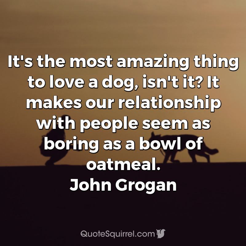 It's the most amazing thing to love a dog, isn't it? It makes our