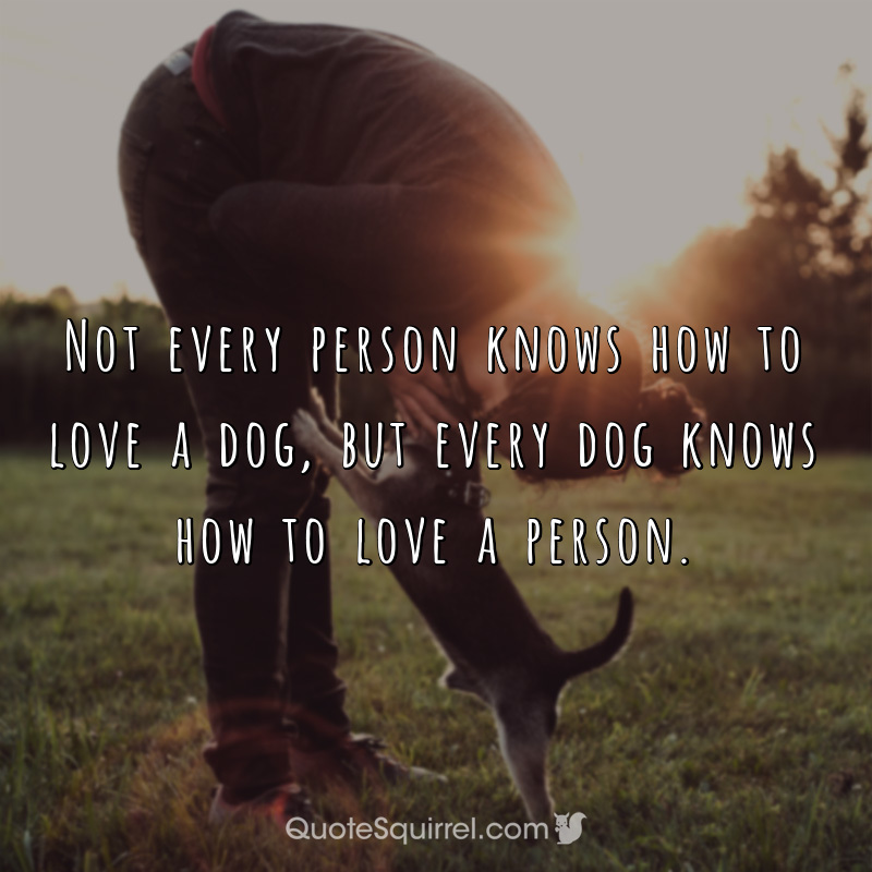 Not every person knows how to love a dog, but every dog knows how to