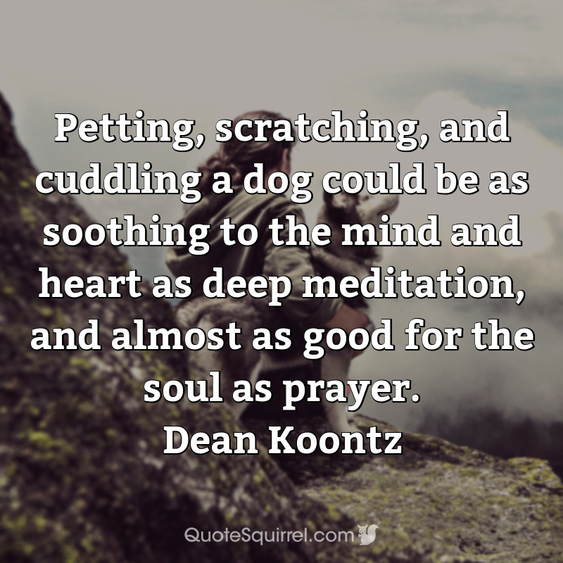 Petting, scratching, and cuddling a dog could be as soothing to the mind