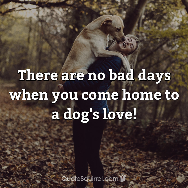 There are no bad days when you come home to a dog's love!