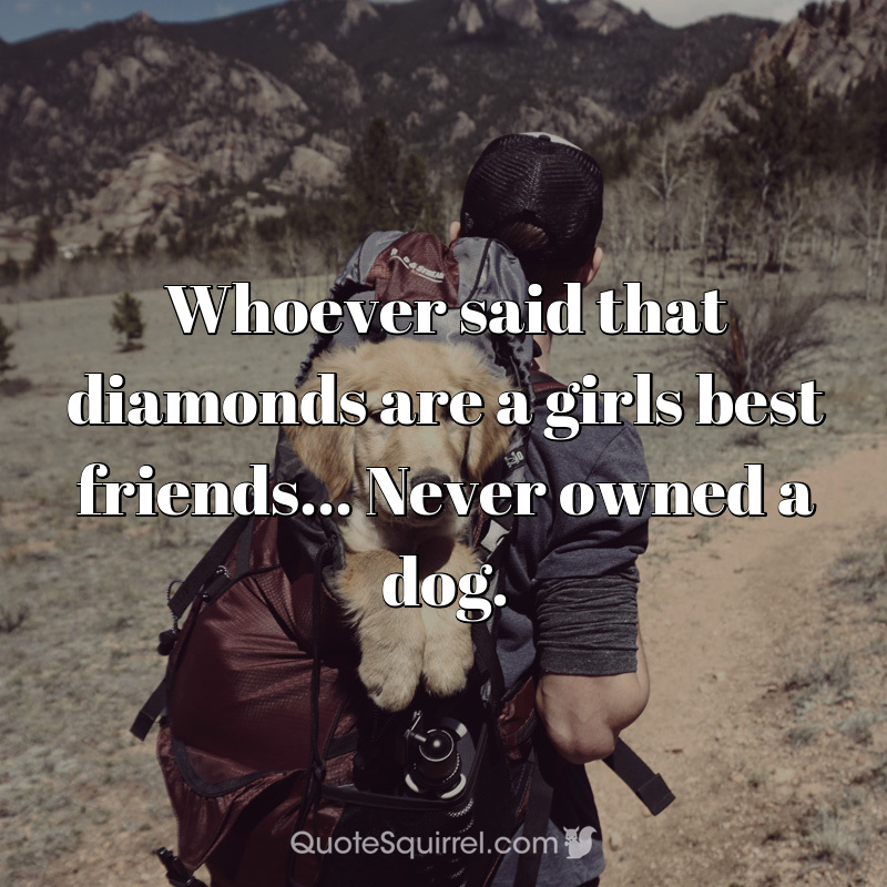 Whoever said that diamonds are a girls best friends… Never owned a dog.