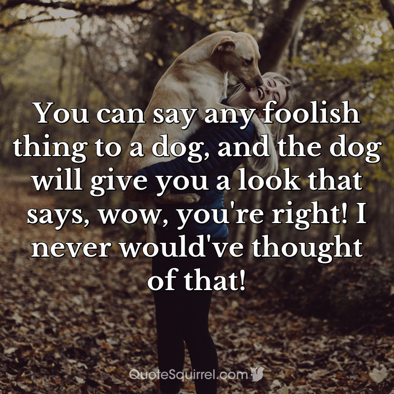 You can say any foolish thing to a dog, and the dog will give you a look